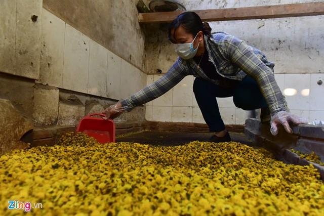 Hoa sấy khô dùng làm trà hoặc đem hấp diêm sinh để bán cho các tiệm thuốc. Giá hoa sấy sạch khoảng 300.000 đồng/kg, trong khi giá hấp diêm sinh khoảng 230.000 đồng/kg.
