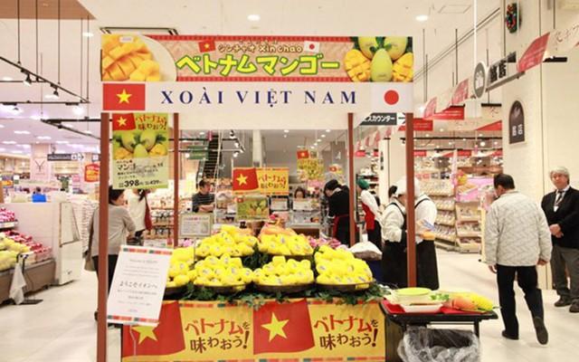 Xoài Cát Chu Việt Nam chính thức vào thị trường Nhật Bản. Ở đây, xoài có giá khoảng 100.000 đồng mỗi trái (Ảnh: KT)
