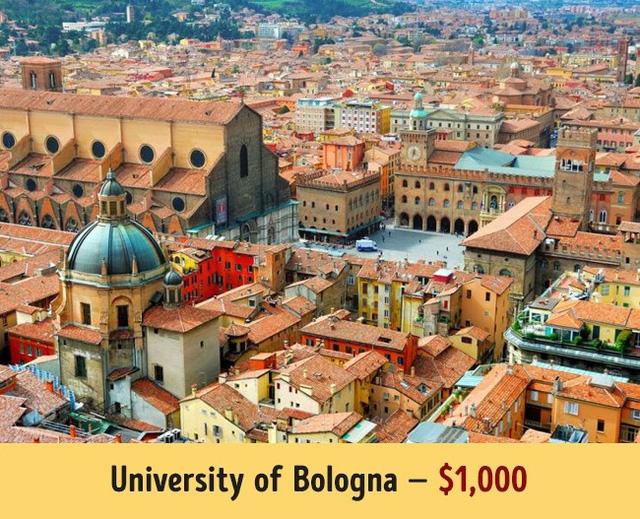 Đại học Bologna có mức học phí trung bình 1.000$ mỗi năm.