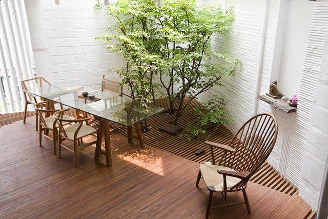Sự kết hợp hài hòa giữa nội thất gỗ, tường trắng và màu xanh của cây khiến không gian càng thêm đẹp.