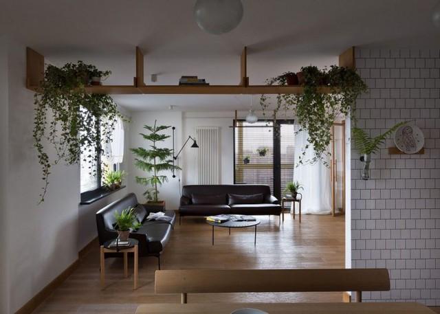 Nhờ lợi thế có rất nhiều cửa sổ nên mọi không gian trong nhà lúc nào cũng thoáng sáng.