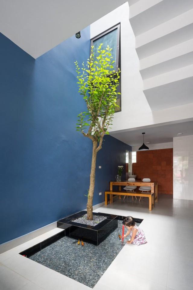 Nhờ cầu thang thiết kế vị trí này mà không gian ngôi nhà không bị chia cắt. Không những thế còn có khoảng giếng trời với cây xanh và bể cá giúp làm mát cho ngôi nhà.