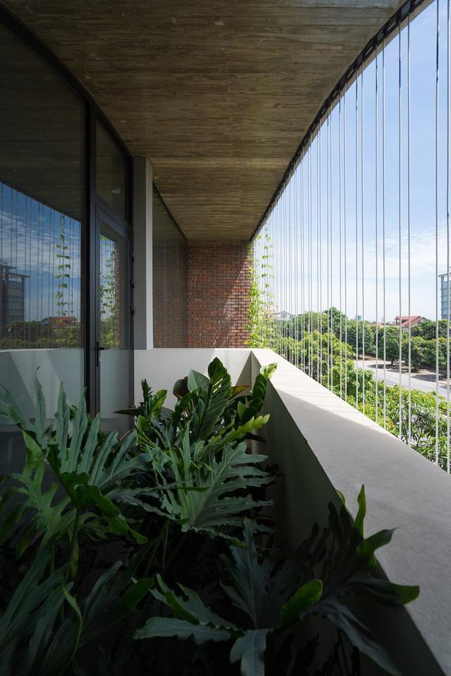 Cây xanh được trồng cả bên ngoài và bên trong mang lại sự tươi mát và sức sống cho ngôi nhà.