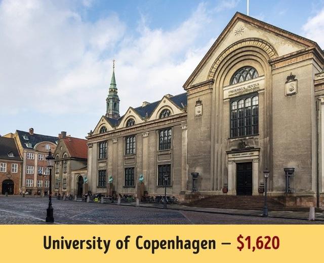 A?a??i ha�?c Copenhagen cA? ma��c ha�?c phA� khA? da�� cha��u 1.620$/nA?m.