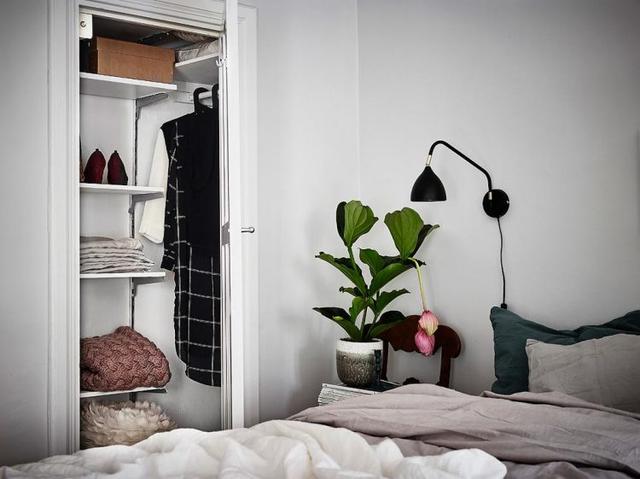Sắc xanh của chậu cây cảnh cũng được tận dụng để mang hơi thở thiên nhiên vào phòng ngủ, thổi bừng lên sức sống tự nhiên.