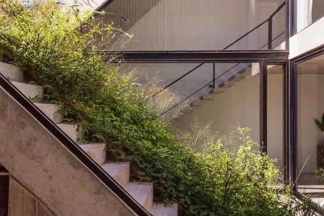 Nhà còn có hệ thống thu thập nước mưa và tận dụng nước thải sinh hoạt để tự động tưới cho các khu vườn.
