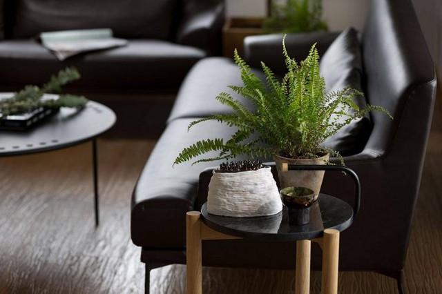 Căn hộ đẹp như mơ với cây xanh và nội thất gỗ - Ảnh 15.