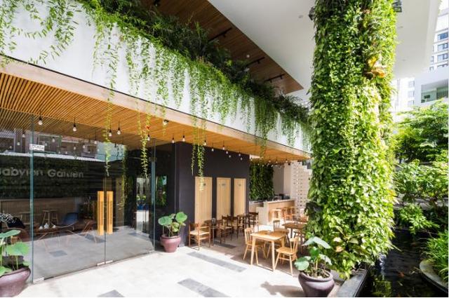 Dù diện tích nhỏ và không có chỗ để làm vườn, nhưng với thiết kế độc đáo này mọi ngõ ngách trong khách sạn đều như một khu vườn xanh mát.