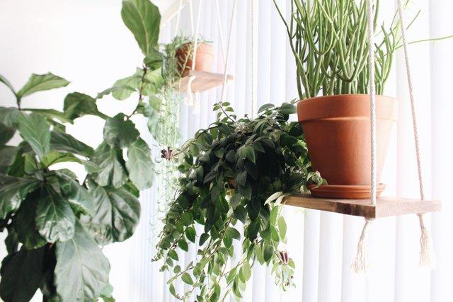 Không gian nơi cửa sổ tràn ngập ánh sáng và màu xanh của cây cối.