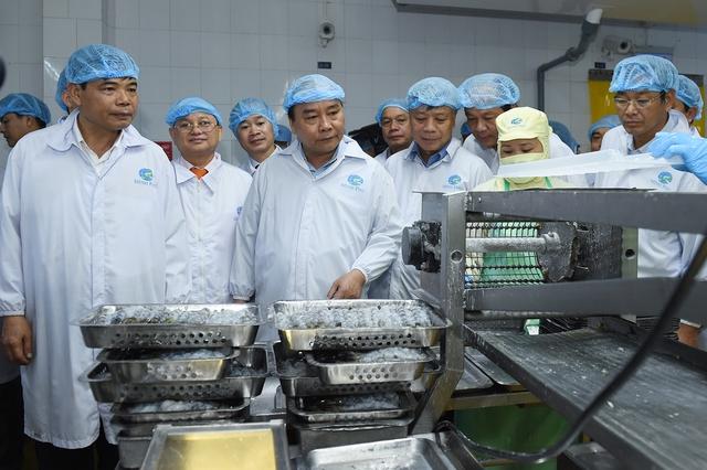 """Thủ tướng thăm cơ sở sản xuất tôm có """"giấc mơ"""" 2 tỷ USD (1)"""