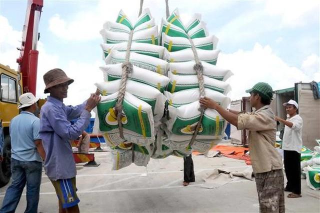 Xuất khẩu gạo Việt Nam đang tốn kém chi phí về thủ tục