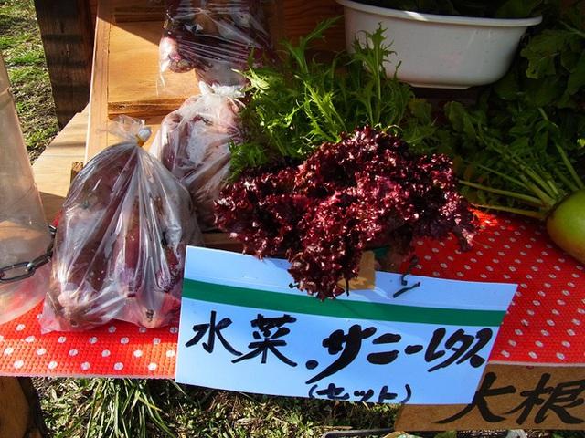 Đây là cửa hàng không người bán của một người nông dân tại tỉnh Kagoshima, thuộc đảo Kyushu miền Nam nước Nhật.