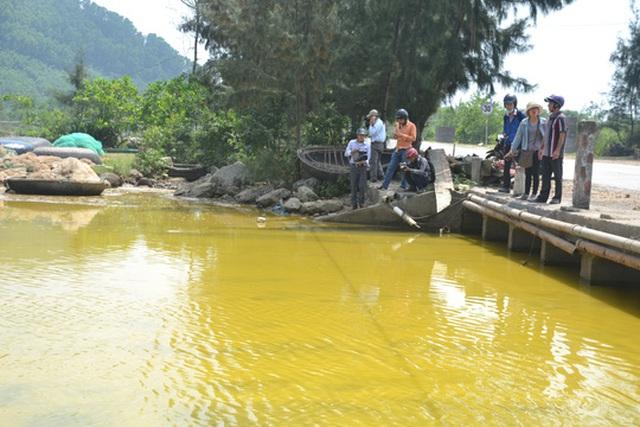 Màu vàng và có mùi hôi tanh khi tảo chết