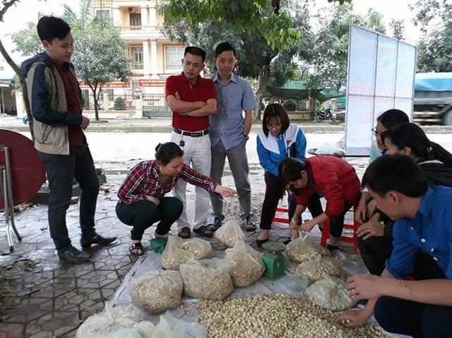 Huyện đoàn Đô lương tổ chức thu mua, tiêu thụ hành tăm cho nông dân