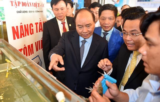 Thủ tướng tham quan nơi sản xuất tôm giống của Tập đoàn Việt-Úc. Ảnh: VGP/quang Hiếu