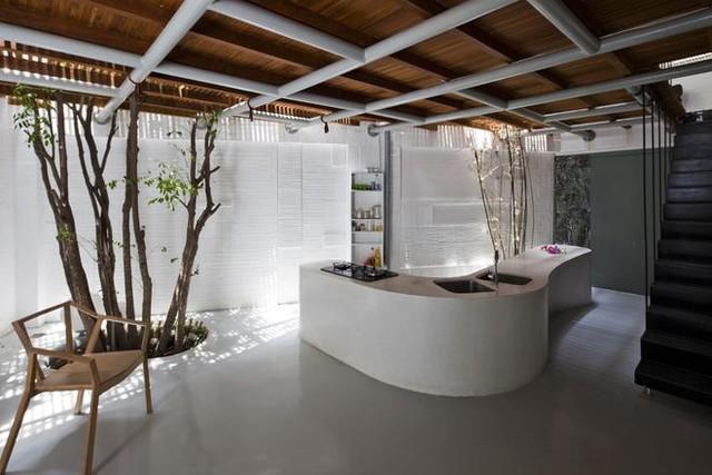 Không gian tầng 1 thông thoáng là khu vực giành cho nhà bếp, bàn ăn, khu vệ sinh và một góc vườn nhỏ nơi gốc cây khế.