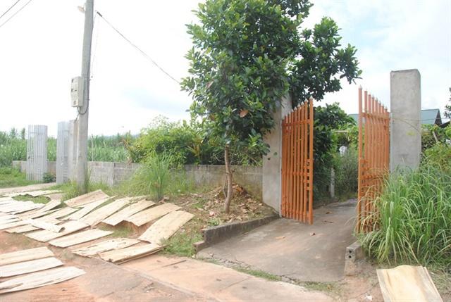 Hai hộ dân dựng nhà, ở côi cút giữa rừng cỏ voi