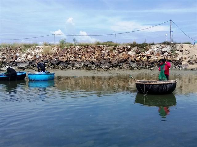Khi thủy triều rút, người dân thường bơi thuyền thúng ra cách bờ 200 - 300m để bắt thức ăn cho tôm