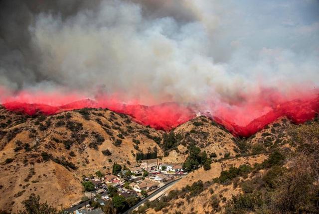 Đám cháy ở TP Los Angeles được cho là tồi tệ nhất lịch sử thành phố. Ảnh: Reuters
