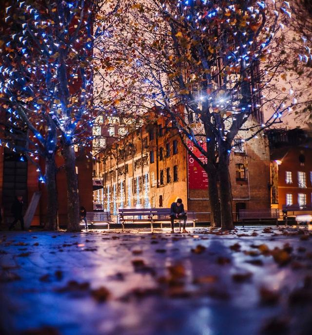 Một đêm thu tại London với những đám lá xào xạc trên đường.
