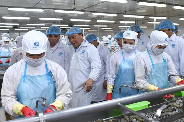 """Thủ tướng thăm cơ sở sản xuất tôm có """"giấc mơ"""" 2 tỷ USD (2)"""