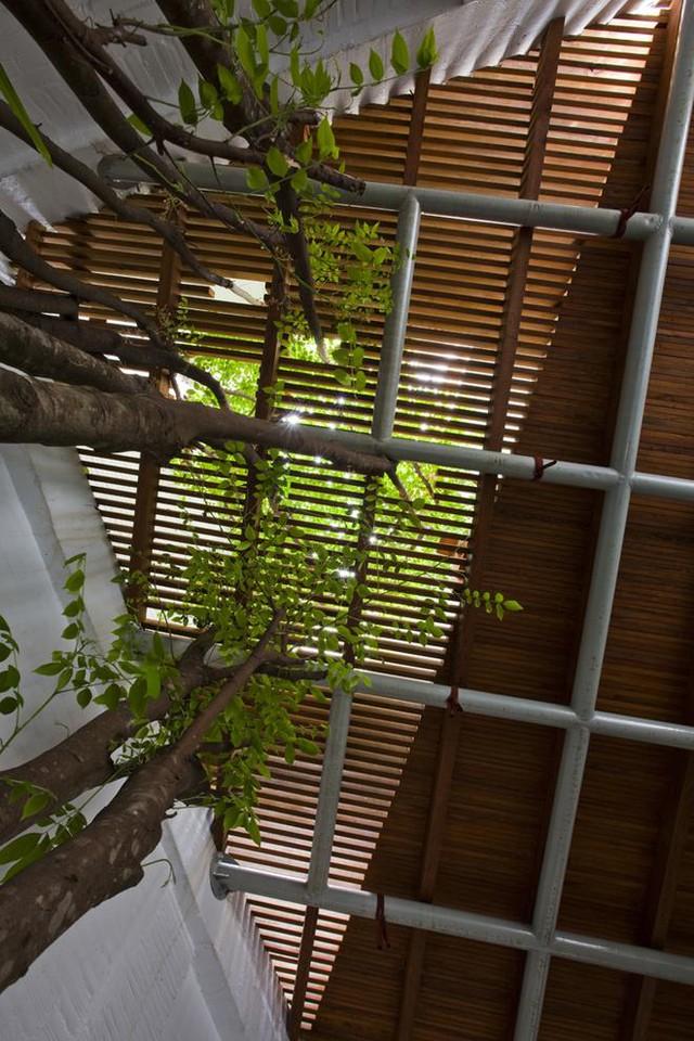 Để bảo đảm cho cây phát triển tự nhiên và tận dụng tối đa diện tích sử dụng chủ nhà dùng hệ lam gỗ thông suốt từ tầng 1 lên tầng 3.