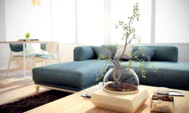 Trong căn hộ cây xanh còn xuất hiện ở khắp mọi nơi mang đến bầu không khí trong lành và không gian xanh mát cho chủ nhà.