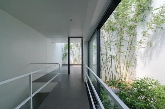 Với những ngôi nhà phố nhiều tầng, phần quanh giếng trời được tận dụng để trồng cây xanh mang đến bầu không khí trong lành và thổi bừng sức sống cho không gian.