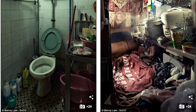 Bồn cầu ngay cạnh chỗ nấu ăn, nồi cơm được đặt trên giá ngay cạnh giường ngủ.