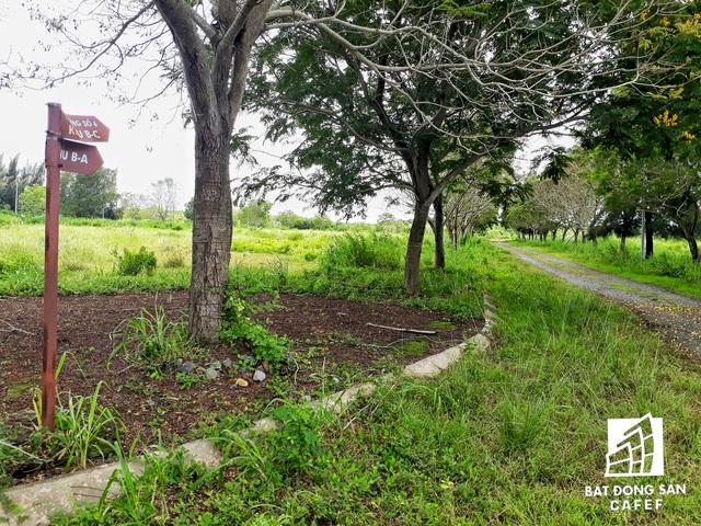Một khu dân cư hy vọng sẽ tạo cuộc sống xanh cho người dân, nhưng vào bên trong không khác gì vùng rừng rậm.