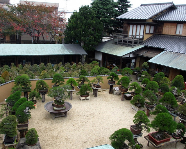 Một góc vườn Shunka-en.