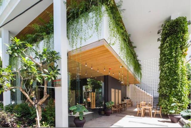 Cây xanh được phủ kín mọi nơi từ lối vào nhà cho đến ban công và thậm chí cả những bức tường trên tầng 2.