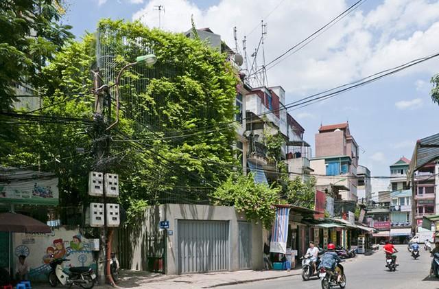 Ngôi nhà được đặc trưng bởi mặt tiền phủ xanh nhờ một giàn dây leo trông hệt như một thác nước xanh.