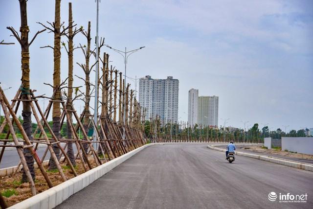 Đường có mặt cắt ngang rộng 50m, bao gồm: 2 làn đường xe chạy chính, 2 làn đường gom và 2 dải phân cách, trong đó dải phân cách trung tâm rộng hơn một mét.