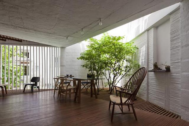 Khu vực tiếp khách thoáng sáng được đặt cạnh cây khế.