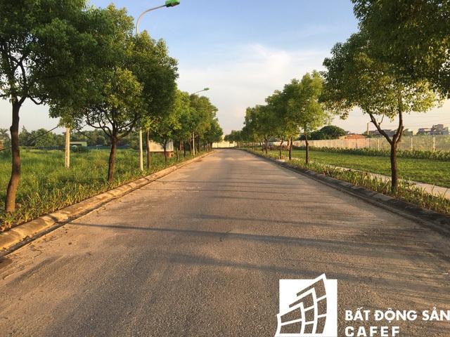 Một con đường bên trong dự án đã được hoàn thiện.