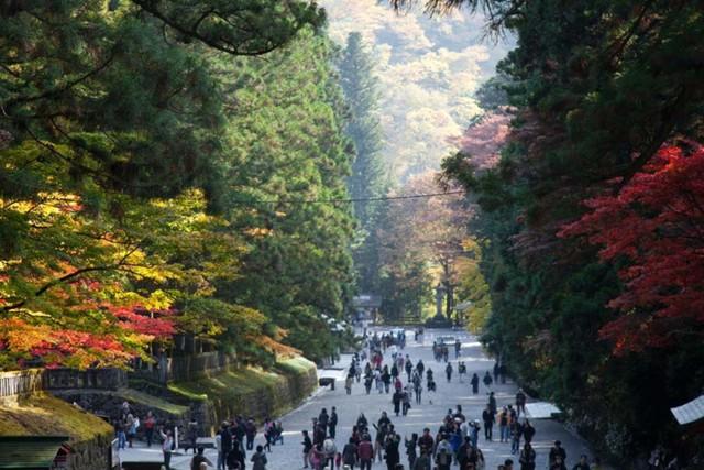 6. Nikko. Nikko nằm trong một công viên quốc gia xinh đẹp, đặc biệt rực rỡ từ đầu tháng 10 đến giữa tháng 11 và là nơi nghỉ ngơi cuối cùng của một trong những shogun (Mạc chúa) nổi tiếng nhất của Nhật Bản. Nơi tham quan thú vị là hồ Chuzenji và thị trấn suối nước nóng Yumoto Onsen.