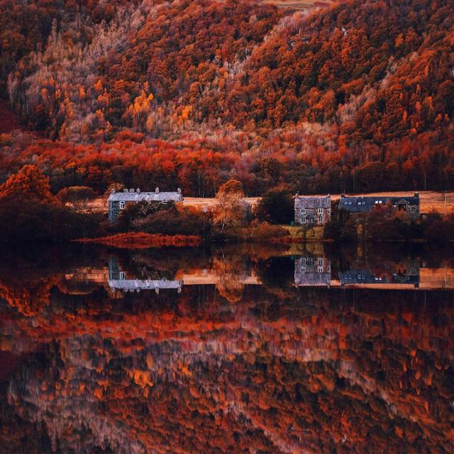 Vùng hồ Windermere nổi tiếng ở Anh như một chiếc gương soi, đỏ rực sắc lá.