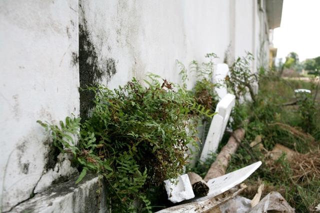 Do xảy ra khiếu kiện nên người dân thuộc diện tái định cư đã không nhận nhà, xung quanh cỏ mọc um tùm sau 10 năm.