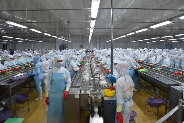 """Thủ tướng thăm cơ sở sản xuất tôm có """"giấc mơ"""" 2 tỷ USD (5)"""