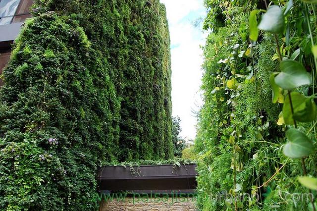 """Ngày nay, Edificio Santalaia được coi là """"trái tim xanh của thành phố Bogota"""" và là một biểu tượng cho sự phát triển bền vững thân thiện với môi trường."""