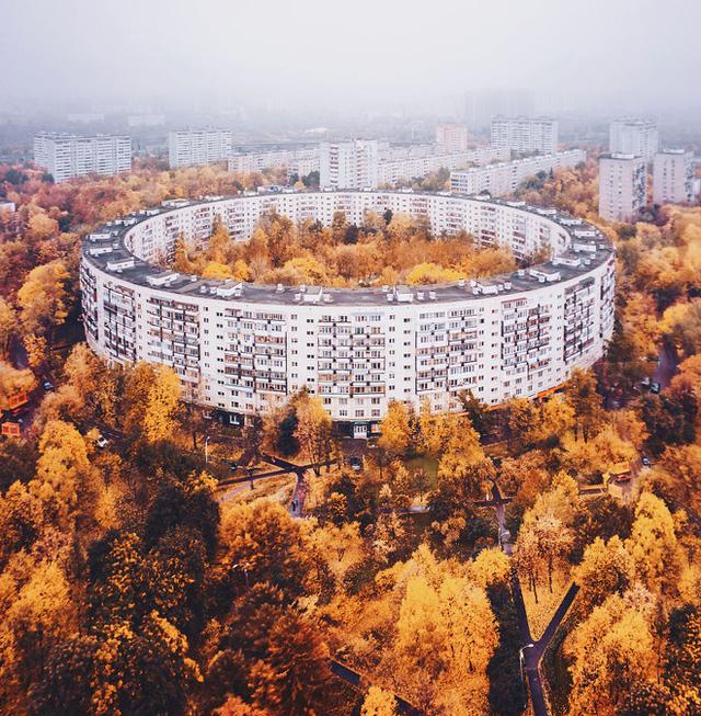 Một tòa nhà được bao phủ bởi rất nhiều những cây lá vàng tại Nga trong mùa thu.