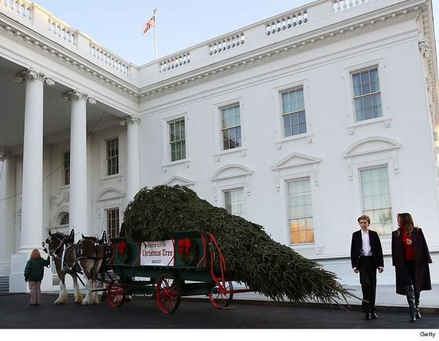 Bà Melania Trump cùng con trai đón cây thông Giáng sinh tại Nhà Trắng trước đó vài ngày.