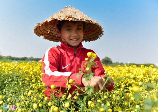 Bé Kiên (12 tuổi) tranh thủ buổi chiều được nghỉ học để đi hái hoa phụ giúp gia đình. Tuy còn nhỏ nhưng em hái khá nhanh, một ngày có thể được 12 kg.