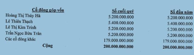 Nguồn: BCTC 2015 SGO