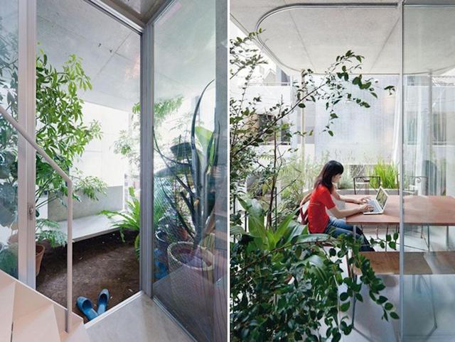 Góc làm việc ngập cây xanh và ánh sáng trong nhà.