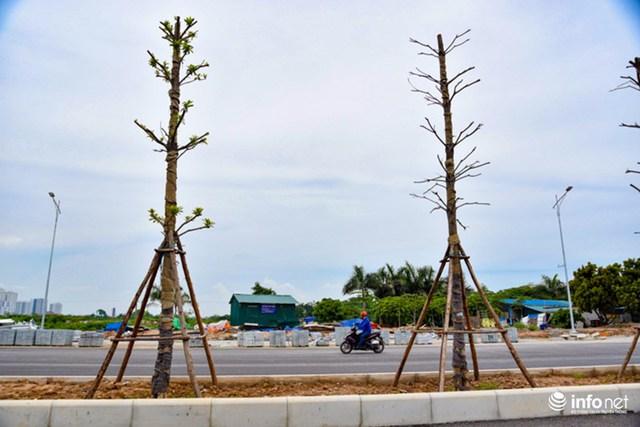Sau khi đi vào hoạt động, tuyến đường giúp rút ngắn thời gian di chuyển từ các quận Thanh Xuân, quận Hoàng Mai đến Xa La, Lê Trọng Tấn (Hà Đông) chỉ còn 10 phút chạy xe.