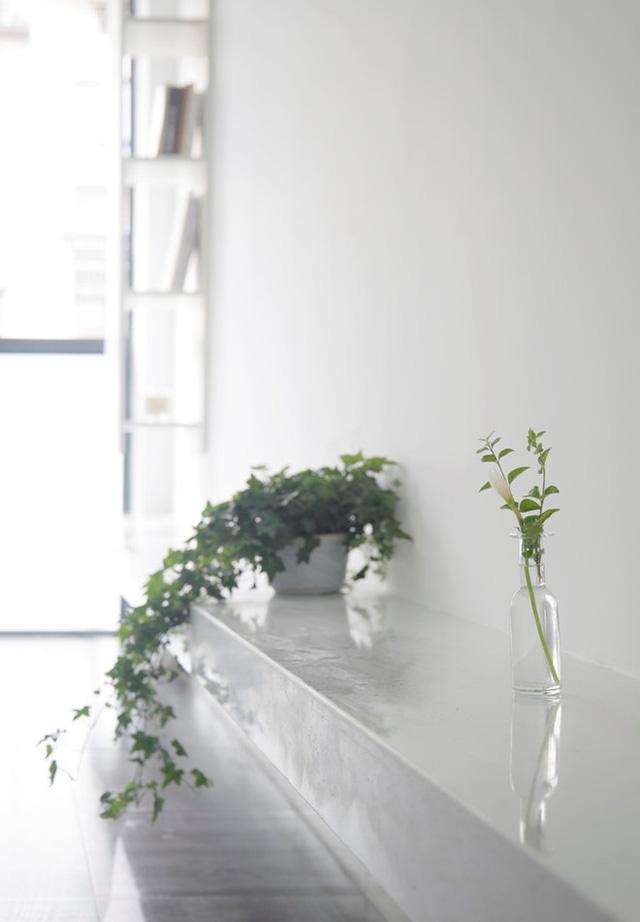 Một bên hông nhà được thiết kế một kệ chạy dài giúp chủ nhà có trưng bày những vật trang trí bắt mắt, làm đẹp cho tổ ấm của mình.