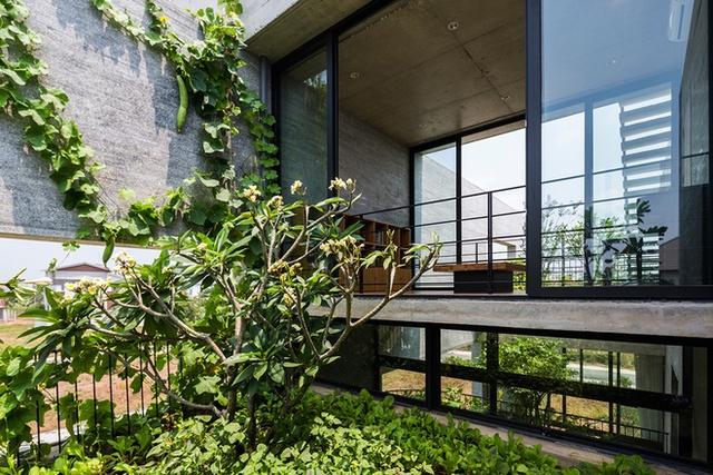 Toàn bộ không gian ngôi nhà nơi đâu cũng tràn ngập ánh sáng và màu xanh cây cỏ. Những khu vườn không chỉ mang màu xanh, bóng mát và giảm nhiệt cho ngôi nhà mà đây còn là nơi cung cấp nguồn rau sạch cho bữa ăn hàng ngày của gia đình.
