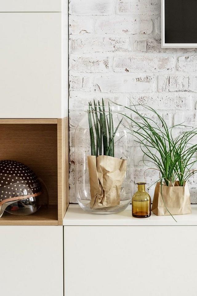 Cây xanh và những kệ gỗ âm tường xuất hiện ở khắp mọi nơi trong nhà.